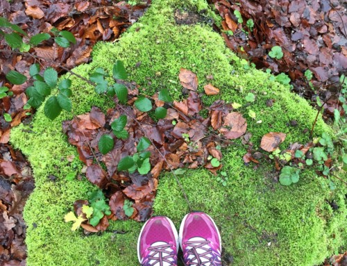 5 Weekse winterreeks Mindful Run! Walk! Yoga!